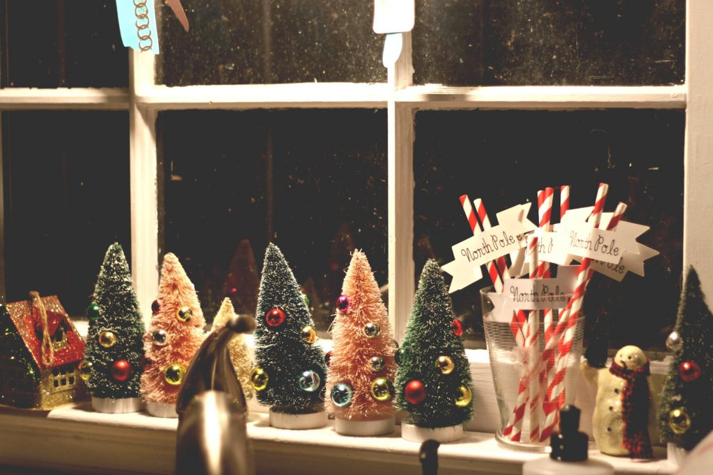 collective bottle brush trees in my kitchen window