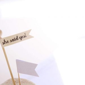 She Said Yes High End Boutique Party Supplies for Bridal Showers, BIrthday Parties, and Weddings by EnFete