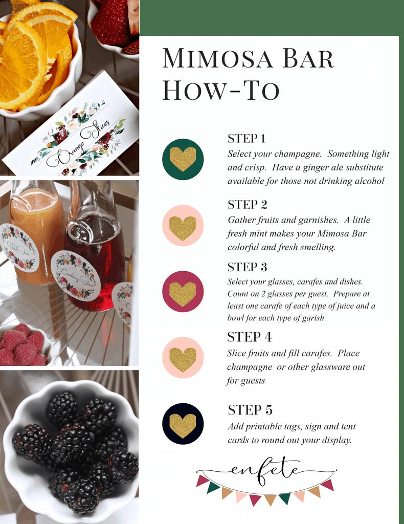 Mimosa Bar Setup How To Infographic