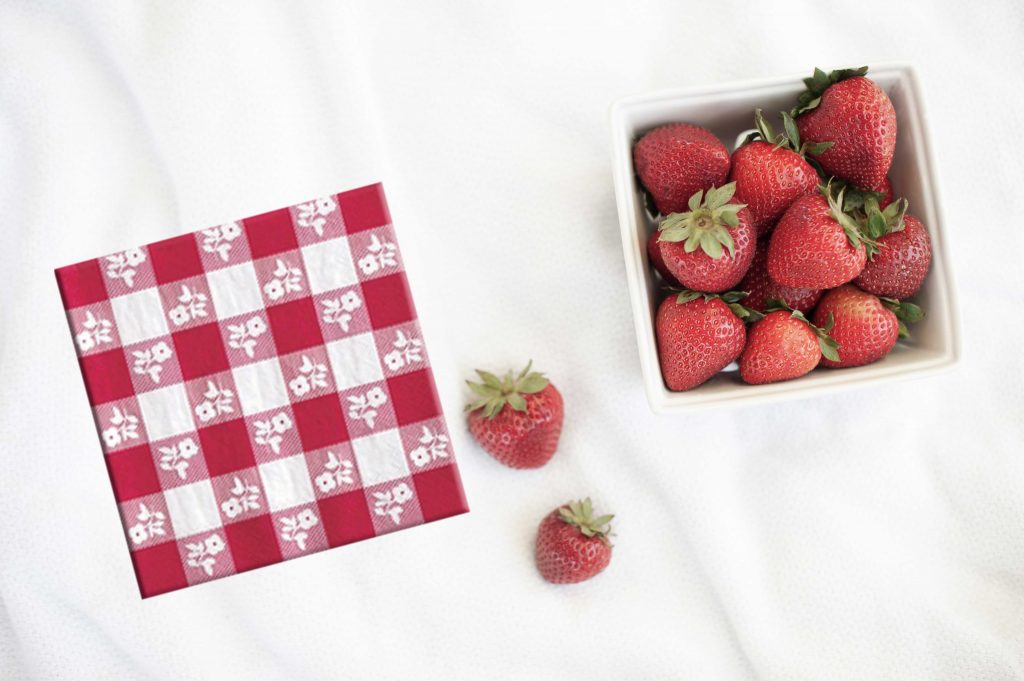 summer entertaining backyard BBQ tableware in red and white gingham - napkins