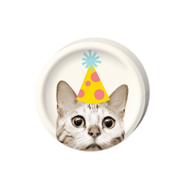 cake birthday plates
