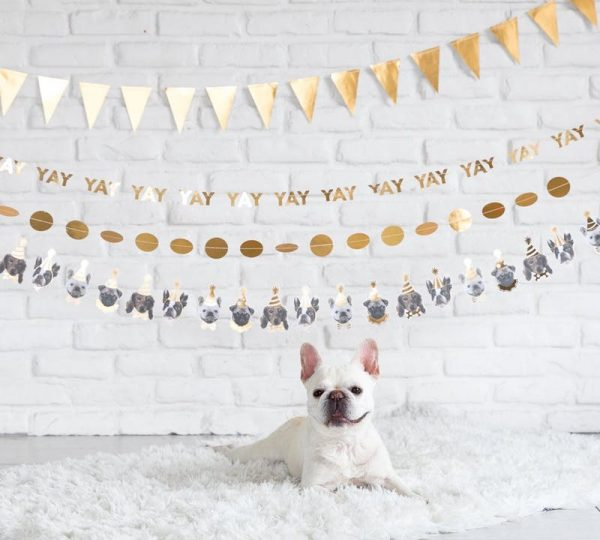 Birthday party gold pennant banner in gold