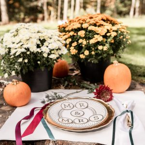 mr. and mrs circle cut outs used a a photo prop for our fall wedding